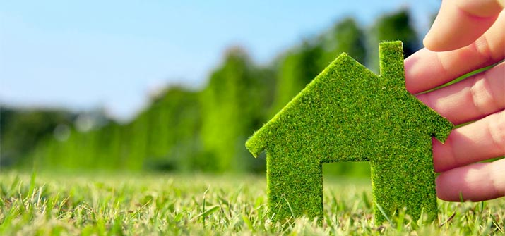 Introduction to Renewable Loans